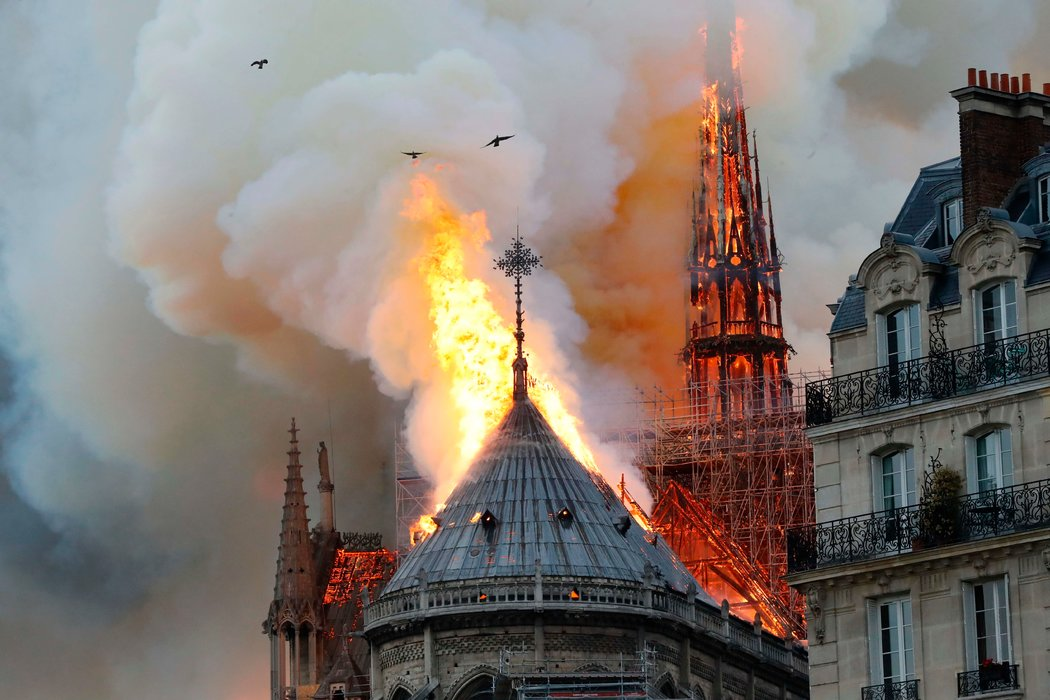 巴黎圣母院-4
